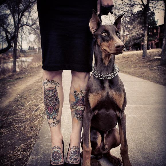 Inked: lady legs & doberman sophistication.